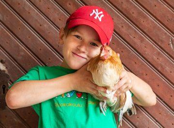 Sommarverksamhet för hundratals barn på 4H:s matskolor